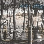Cranbourne Chase. Pen and Ink. A1. SOLD. A2 prints available.